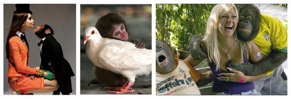 singe et femme