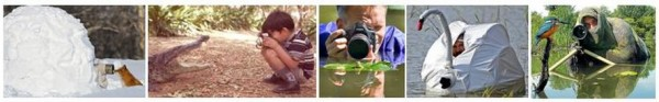 Photographes 4
