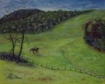 La jeune cavalière à Marcolès