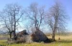 Plateau du Cantal